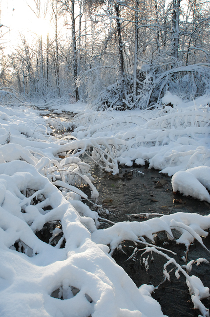 This creek looks refreshing